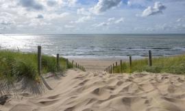 Fotobehang Holland 1508 - Strandopgang Noordzee