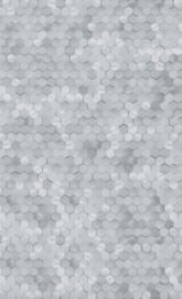 BN Dimensions by Edward van Vliet - 219583