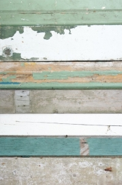 Studio Ditte Sloophout behang Groen