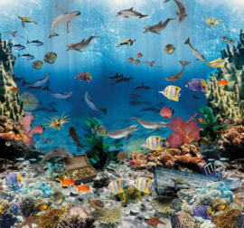 Sofie & Junar INGK7666 aquarium afmeting 300cm x 280cm hoog