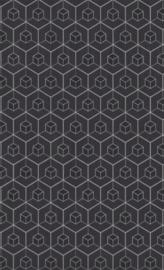 BN Dimensions by Edward van Vliet - 219561