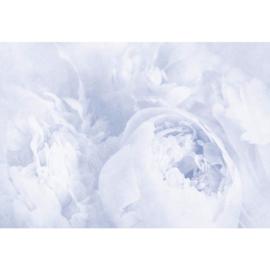 Fotobehang Bloemen Vintage Blauw