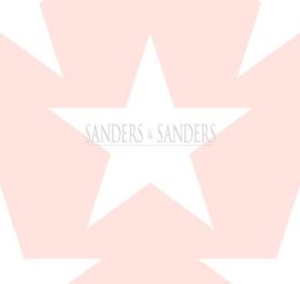 Behang Sanders & Sanders Trends&More 935259 sterren