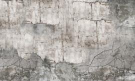 Vanilla Lime wallpapers Murals 014333