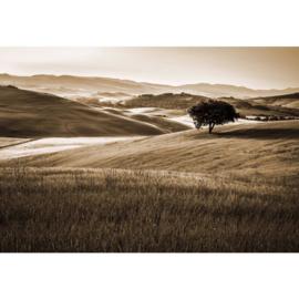 Fotobehang Heuvellandschap Sepia