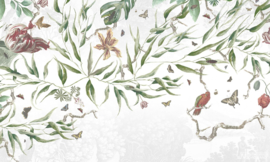 Vanilla Lime wallpapers Murals 014301
