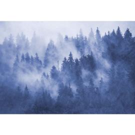 Fotobehang Boomtoppen in de Nevel Blauw