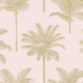 Esta Paradise 139164