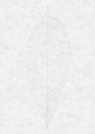Komar Raw R2-012 Decent Leaf