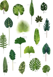 Esta photowallXL 158831 Leaves