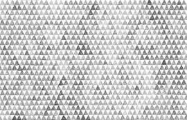 Dutch DigiWalls Due - art. 2036 Triangle