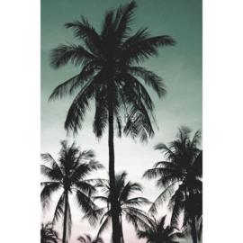 Esta Jungle Fever 158899 Photowall XXL palmbomen