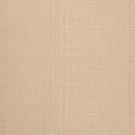 Dutch Wallcoverings Murals Topo 41-Caramel
