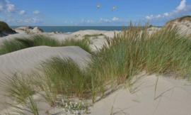 Fotobehang Holland 5602 - Duinen en zeepanorama ||