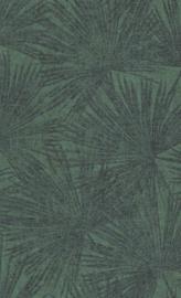 BN Panthera - 220134