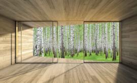 Fotobehang Uitzicht op de bomen