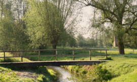 Fotobehang Holland 1381 - Slenaken