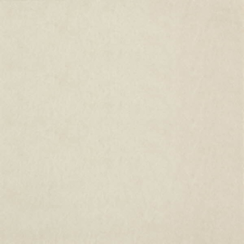 Dutch Wallcoverings Chroma 23-Champagne