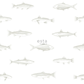Esta - Regatta crew surf edition 138966