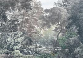 Komar Raw R4-060 Fairytale Forest