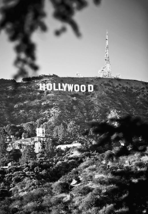 Fotobehang City Love CL06B Hollywood