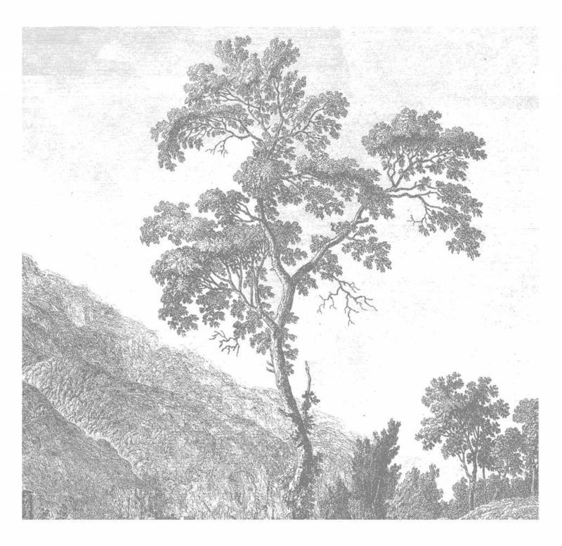 Kek Wonderwalls Engraved Landscapes WP-317
