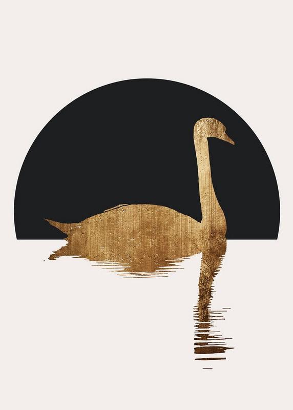 Fotowand The swan 1 by Kubistika afm. 200cm x 280cm hoog
