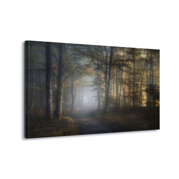 Canvasdoek In het bos