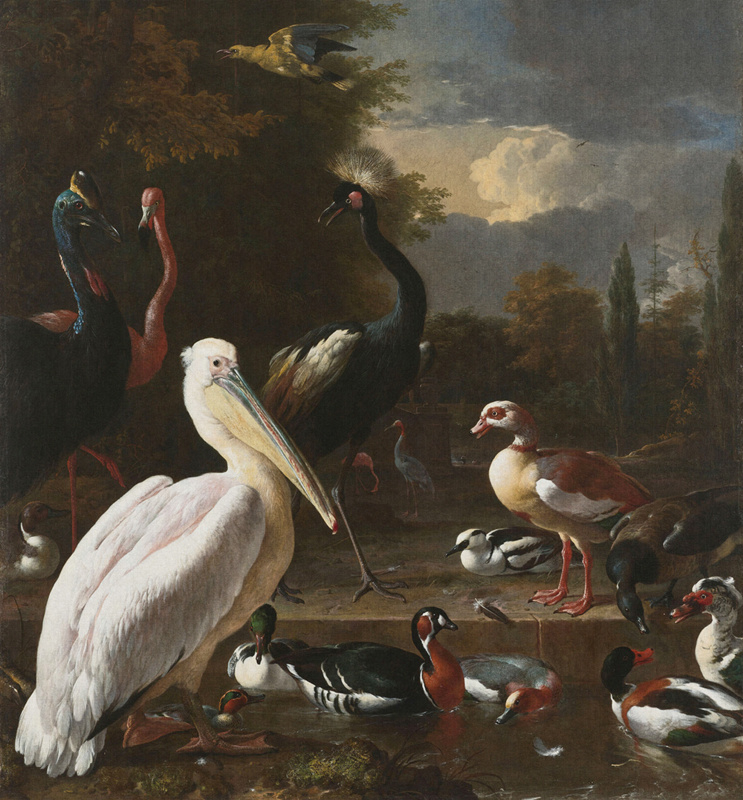Dutch Painted Memories 8014 The floating feather Melchior d'Hondecoeter