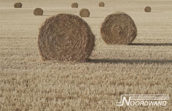 Fotobehang Noordwand Farm life 3750006 Hayday