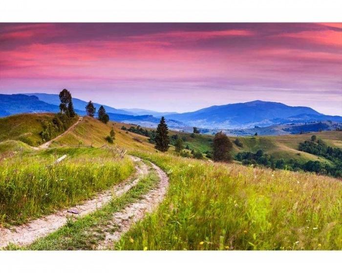 Fotobehang Bloeiende heuvels