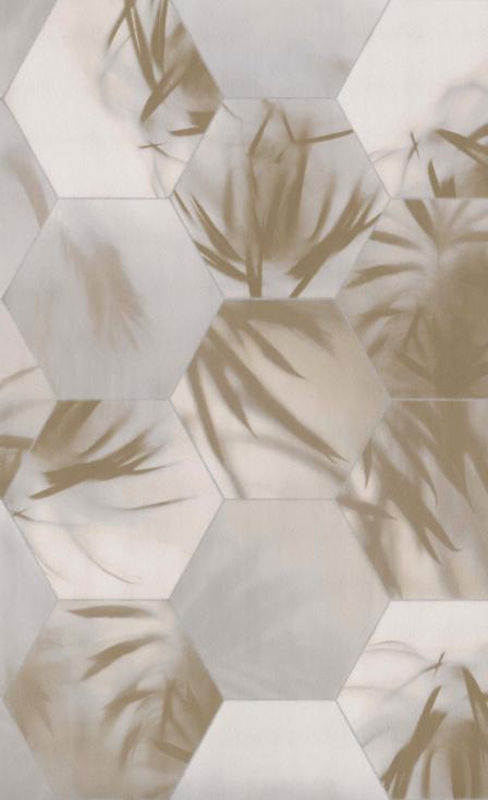 BN Dimensions by Edward van Vliet - 219572