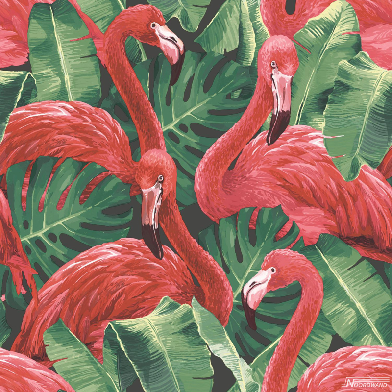 Galerie Global Fusion G56405 flamingo's