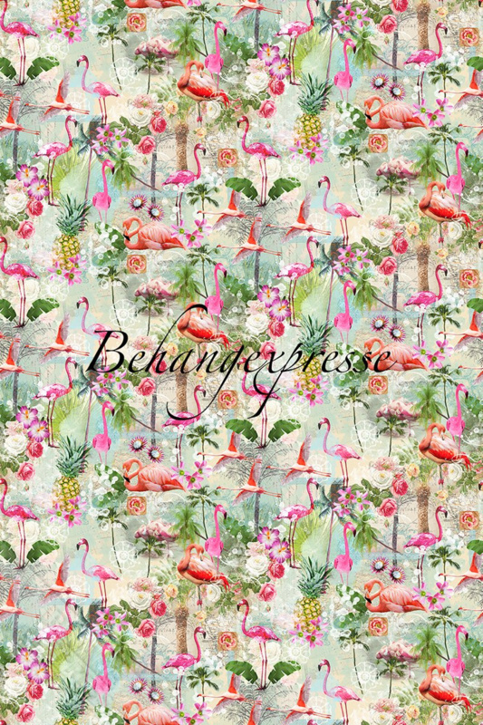 Fotobehang ColorChoc INK 6053 Flamingo Summers