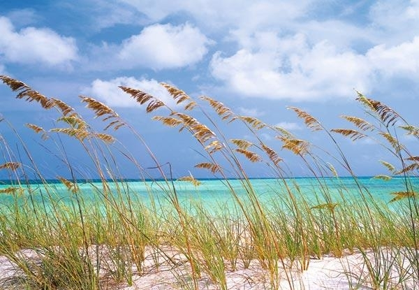 Komar National Geographic fotobehang   Ocean Breeze 8-515