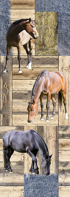 Wallprint AK1048 paarden
