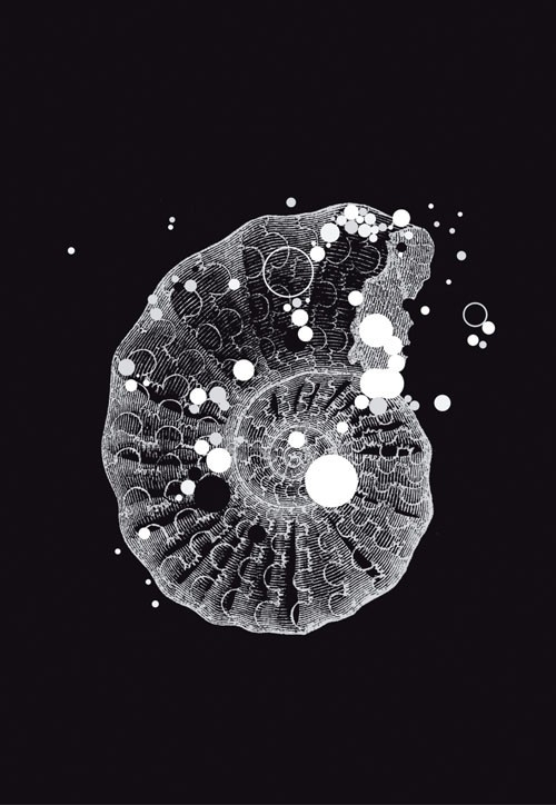 Dutch DigiWalls Due - art. 2051 Fossil