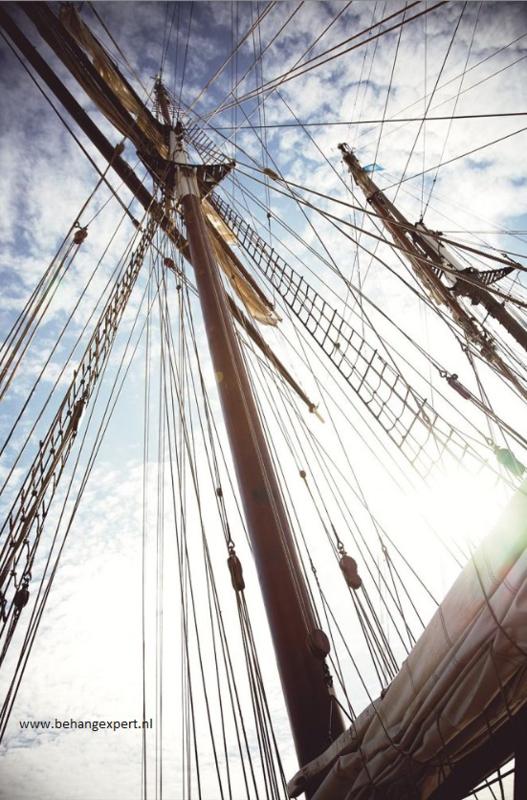 Eijffinger Wallpower Junior 364142 The Mast