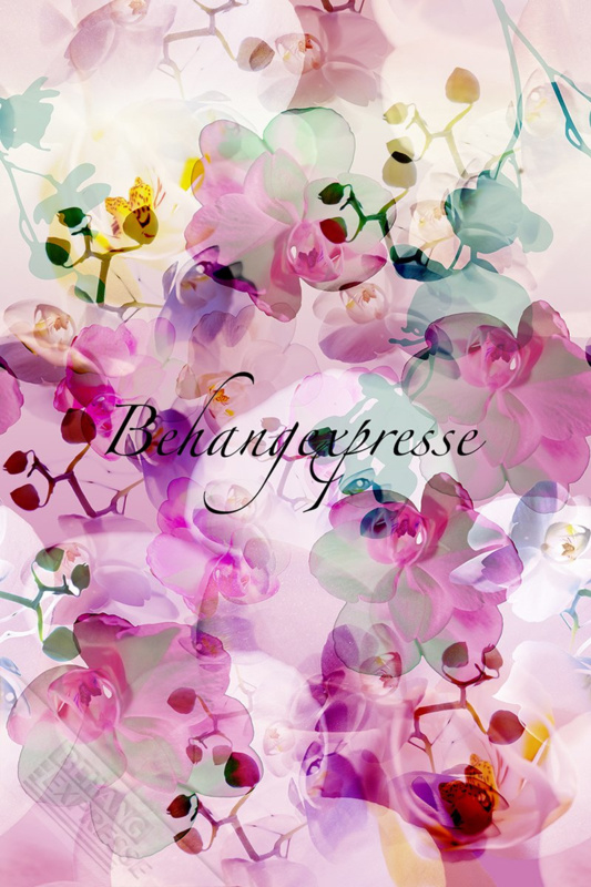Fotobehang ColorChoc INK 6073 Orchids Soft