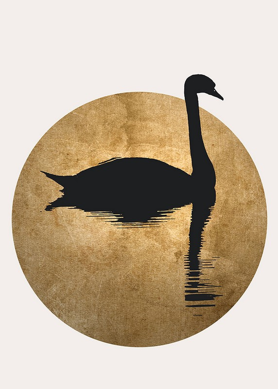 Fotowand The swan 2 by Kubistika afm. 200cm x 280cm hoog