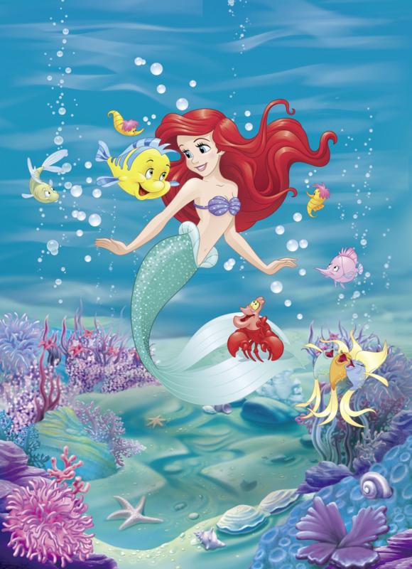 Komar fotobehang 4-4020 Ariel Singing