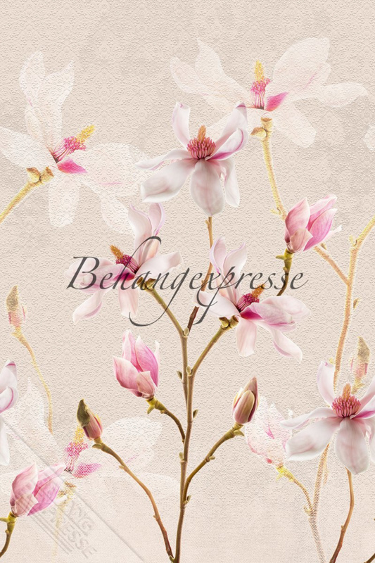 Fotobehang ColorChoc INK 6065 Magnolia