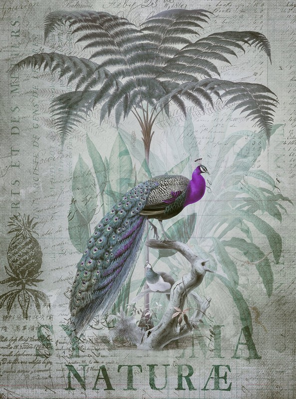 Fotowand Peacock jungle 1 by Andrea Haase afm. 200cm x 270cm hoog