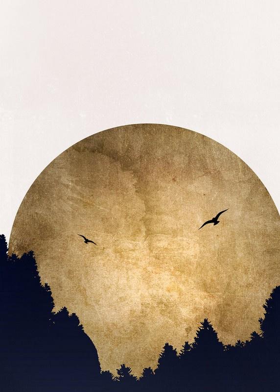Fotowand Two birds by Kubistika afm. 200cm x 280cm hoog