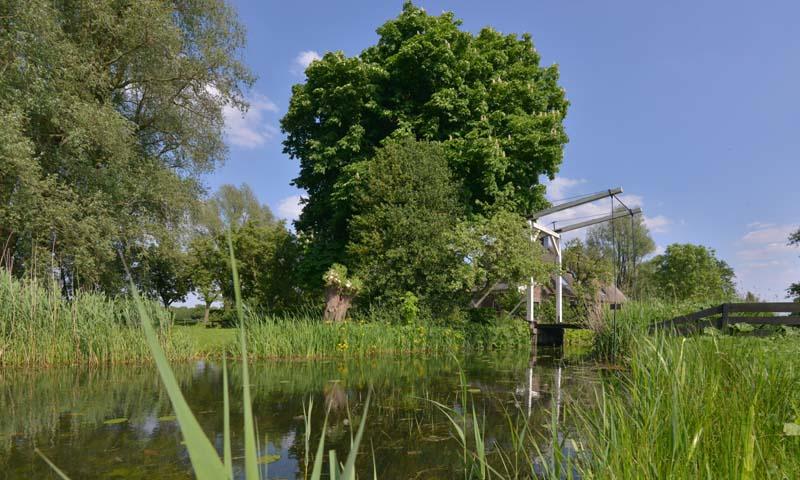 Fotobehang Holland 0937 - Naardermeer bruggetje