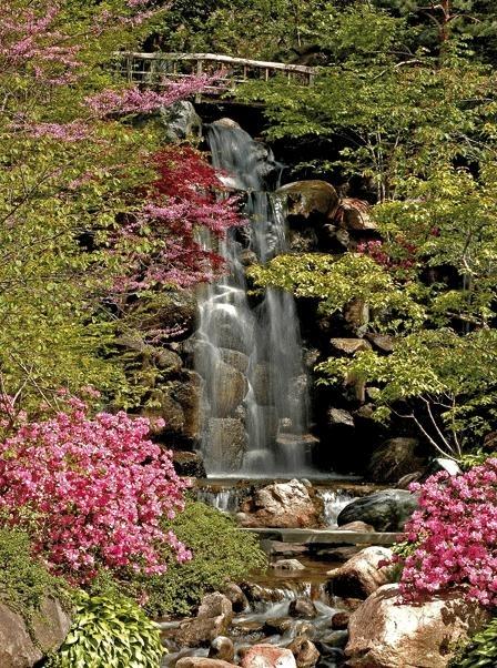 Evolution ll fotobehang  Waterfall 1186