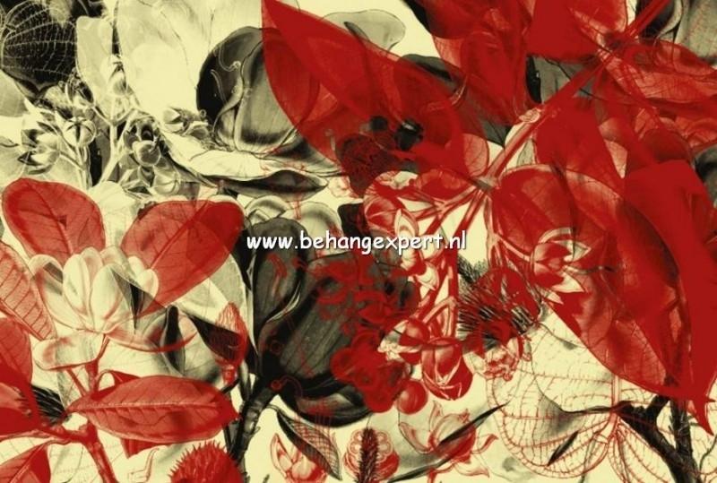 Fotobehang AP Digital 470001 Botanical Garden