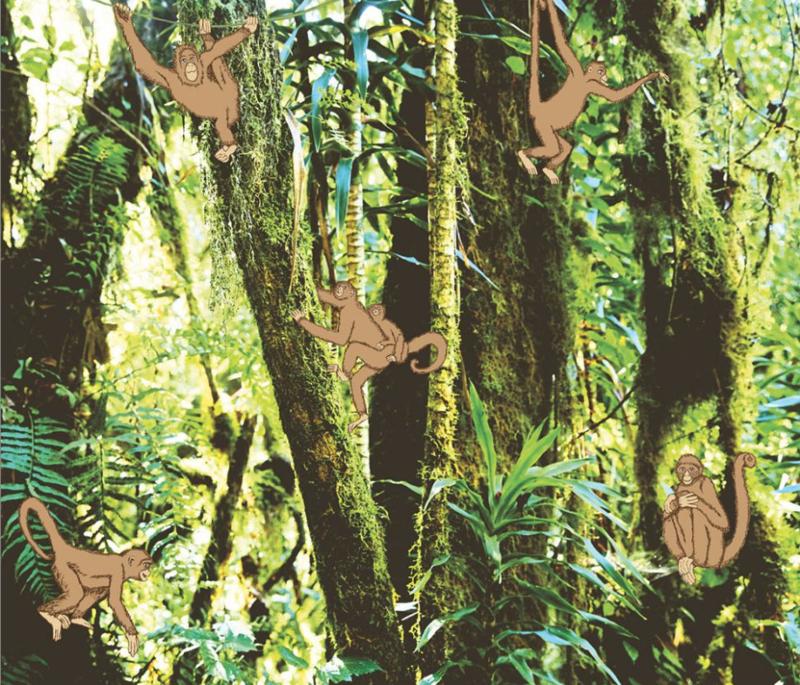 Eijffinger Wallpower Junior 364155 Monkeys In the Jungle