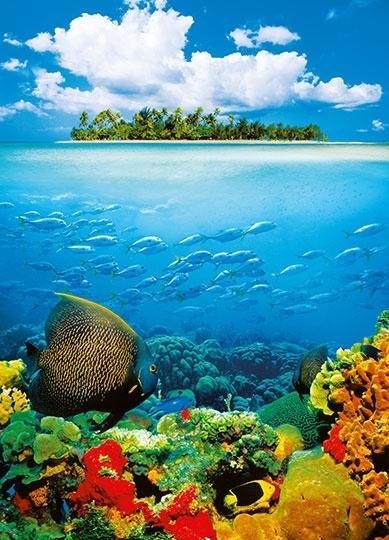 Fotobehang Idealdecor 00374 Treasure Island