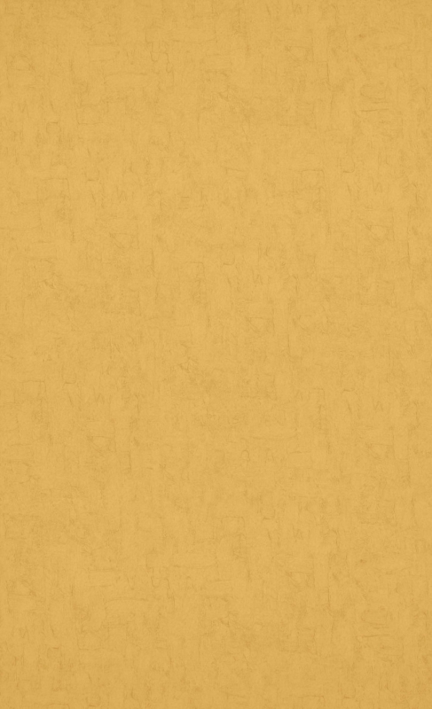 Behang Van Gogh 2019 - 17132